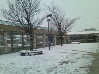 加賀山代温泉に来ています。一面の雪景色!
