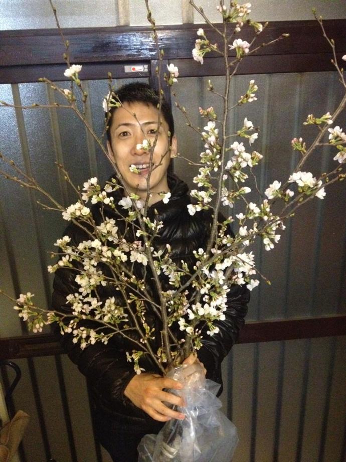 今日は篠山の土田早苗さんのアトリエで「桜寄席」でした。お庭の梅の枝をいただきました〜☆贅沢!!