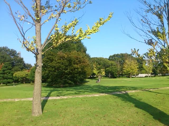つくば研究学園。以前万博があった広大な土地は、緑あふれる公園と研究施設で外国みたいです。
