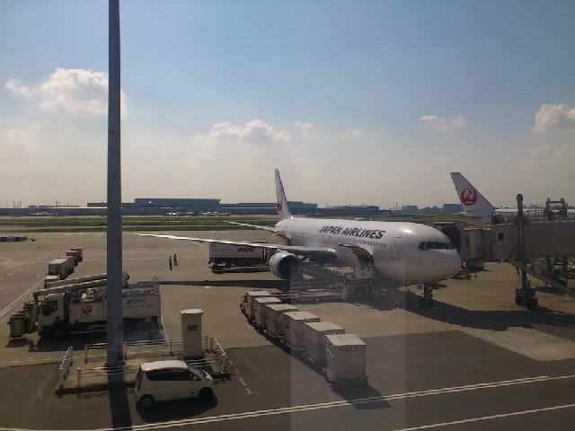 羽田空港から伊丹へ帰ります。たぶん蚊には刺されてないと思うのですが。。。